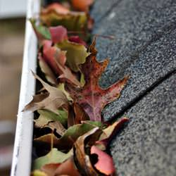 Clogged gutters filled with fall leaves  in Dracut